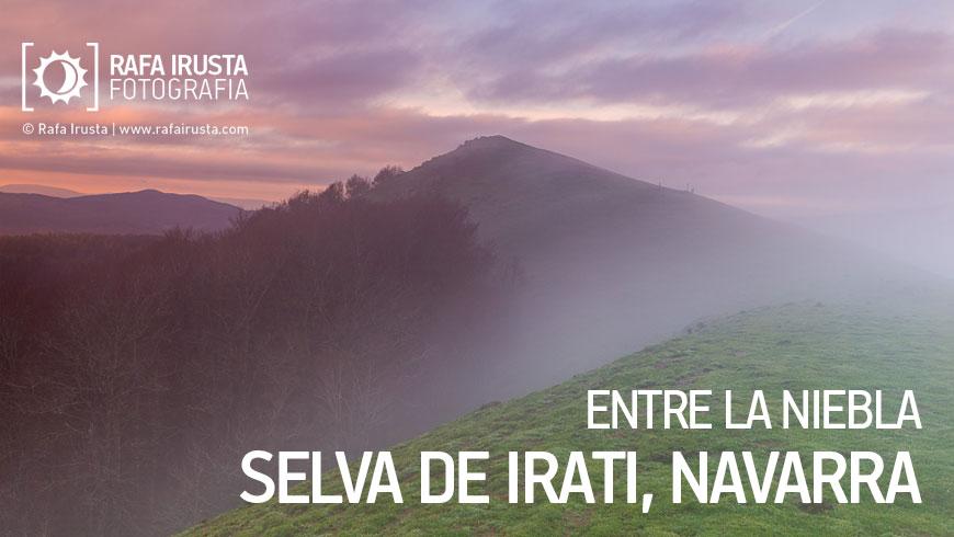 Entre la niebla, Selva de Irati. Navarra