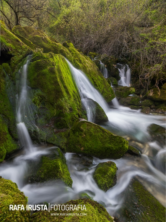 Flowing through the greens