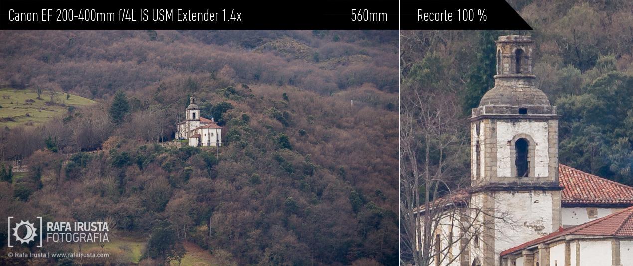 Probando Canon EF 200-400mm f/4L IS más extender 1.4x incorporado, recorte 100 %