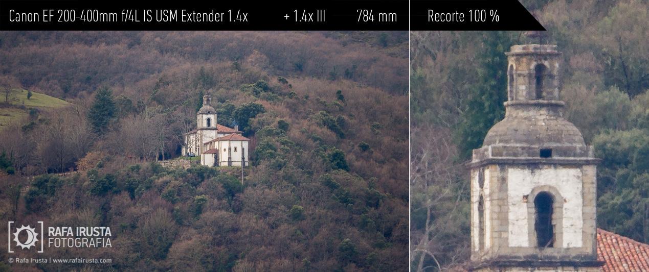 Probando Canon EF 200-400mm f/4L IS más extender 1.4x incorporado más extender 1.4x externo, recorte 100 %