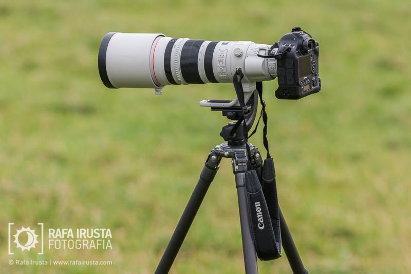Probando Canon EF 200-400mm f/4L IS, Objetivo y cámara Canon 1DX