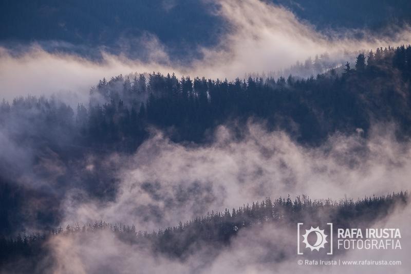 Probando Canon EF 200-400mm f/4L IS, niebla al amencer
