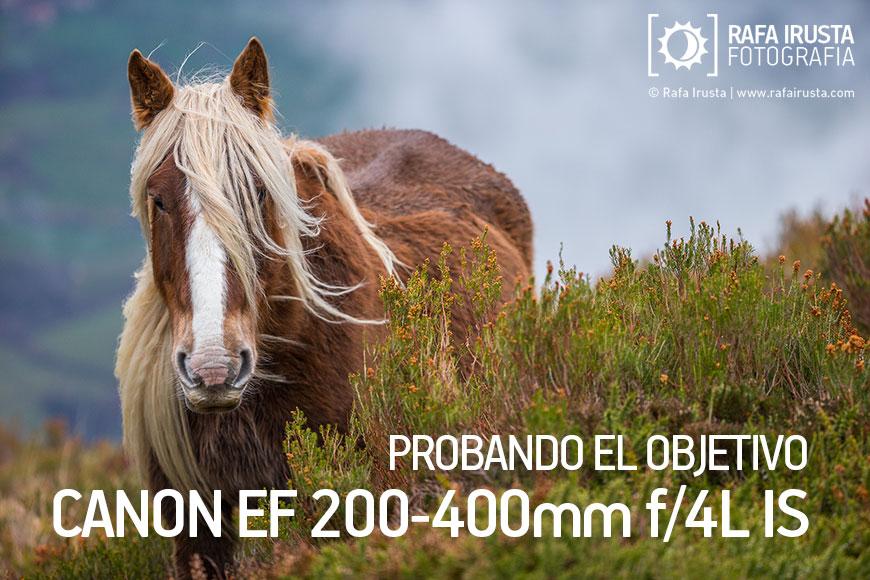 Probando Canon EF 200-400mm f/4L IS, Portada