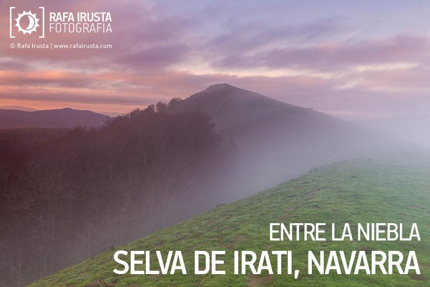 Entre la niebla, Selva de Irati, Navarra