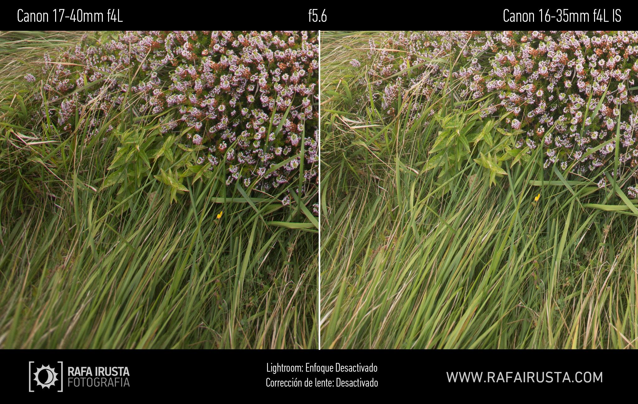 Prueba Canon 16-35mm f/4L IS, comparativa 17-40 vs 16-35 sin enfoque y sin ajuste de perfil, f/5,6