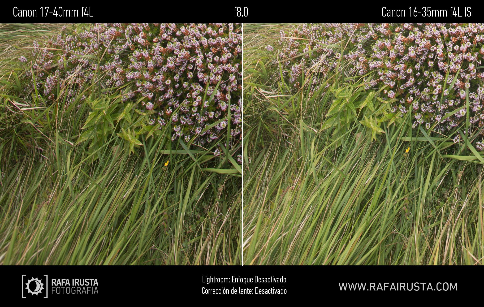 Prueba Canon 16-35mm f/4L IS, comparativa 17-40 vs 16-35 sin enfoque y sin ajuste de perfil, f8
