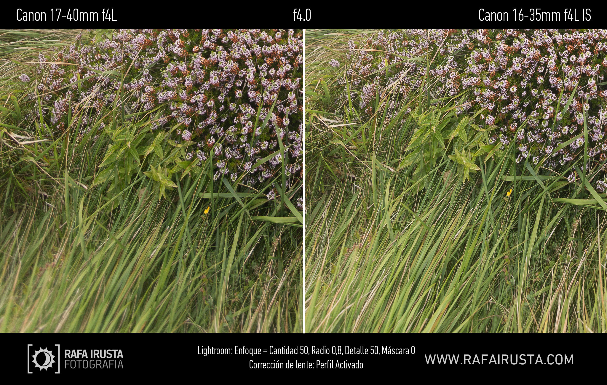 Prueba Canon 16-35mm f/4L IS, comparativa 17-40 vs 16-35 con enfoque y con ajuste de perfil, f4