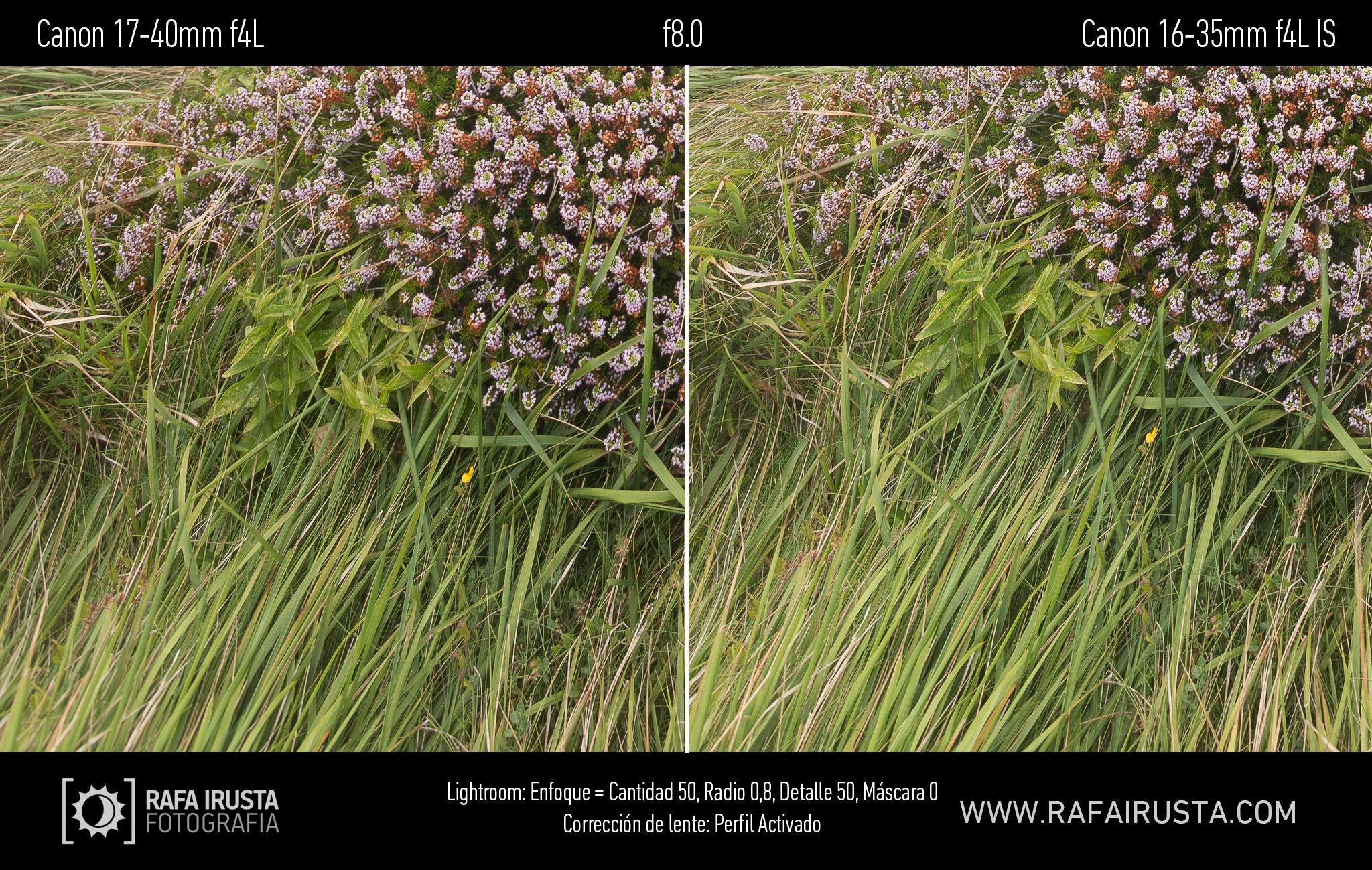 Prueba Canon 16-35mm f/4L IS, comparativa 17-40 vs 16-35 con enfoque y con ajuste de perfil, f8
