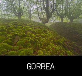 Galería Gorbea