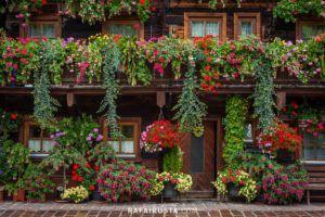 Typical beautiful floral adornments in Dienten, Salzkammergut region, Austria