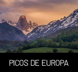 Galería Picos de Europa