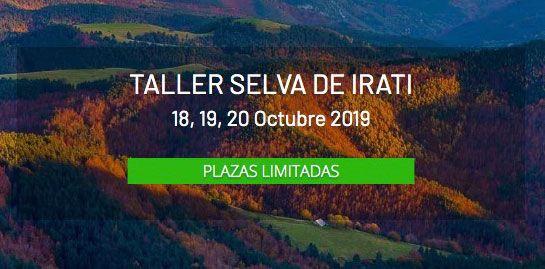 Taller Selva de Irati, Navarra