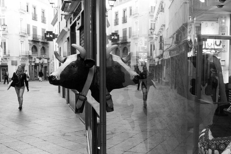 Reflejo en un escaparate, Sandra Vallaure