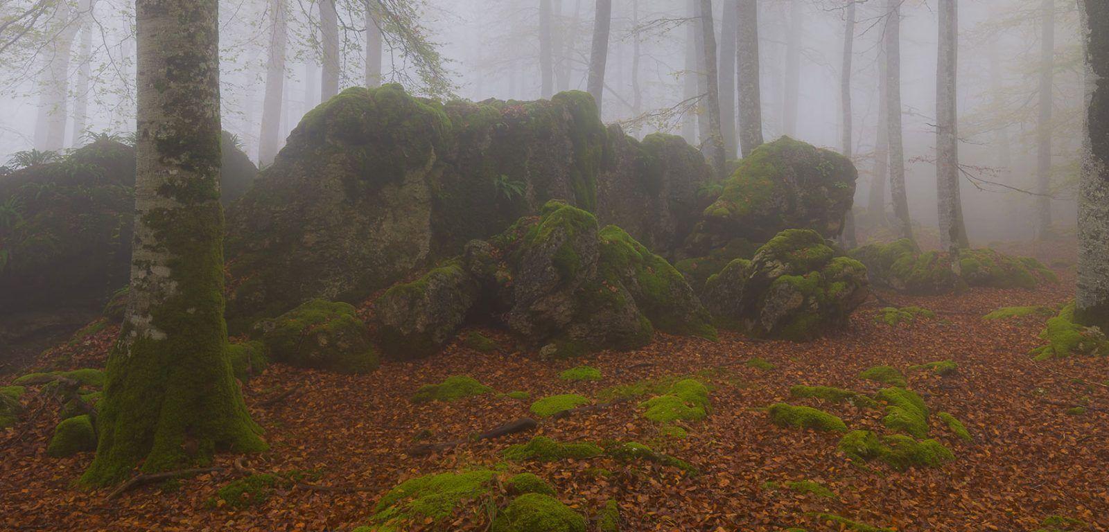 Taller Sierra de Urbasa, Navarra