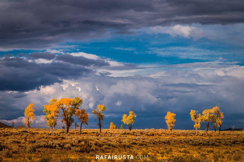 Antes de la tormenta, Grand Teton NP,Wyoming, USA